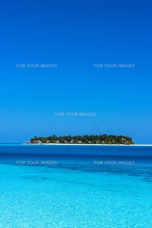 モルディブの写真素材 [FYI00207088]