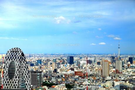 大都会の眺め(東京都庁展望室より)の写真素材 [FYI00207147]
