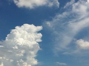 獅子雲の写真素材 [FYI00207284]