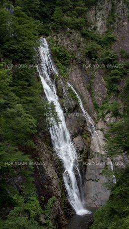 鳥取県鳥取市河原町の三滝渓 千丈滝の写真素材 [FYI00207329]