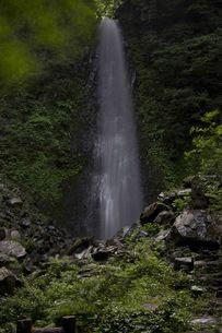 鳥取県鳥取市の雨滝の写真素材 [FYI00207334]