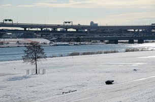 東京雪原(足立区・荒川河川敷)の写真素材 [FYI00207359]