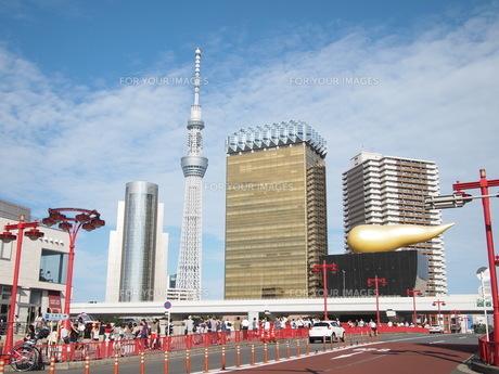 吾妻橋から見たスカイツリーの写真素材 [FYI00207513]