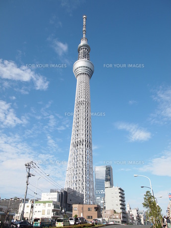 東京スカイツリーの写真素材 [FYI00207514]