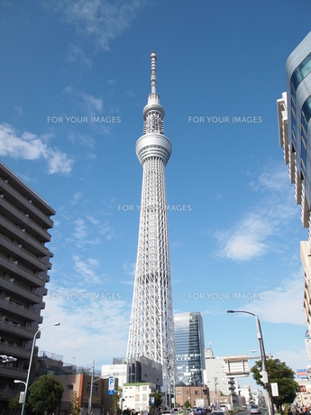 東京スカイツリーの写真素材 [FYI00207520]