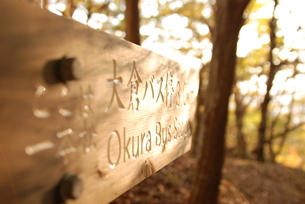 秋、登山道の道しるべの写真素材 [FYI00207728]