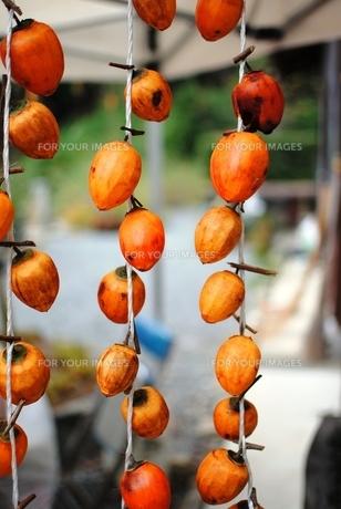 干し柿の写真素材 [FYI00207798]