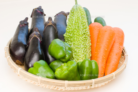 新鮮な夏野菜の写真素材 [FYI00207865]