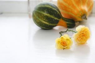 窓辺の薔薇の素材 [FYI00209432]