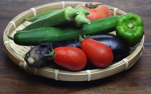 夏野菜の写真素材 [FYI00209721]