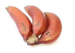 赤バナナの写真素材 [FYI00209948]