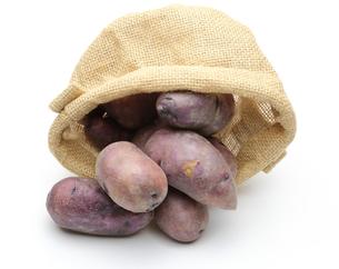 ジャガイモの写真素材 [FYI00210152]