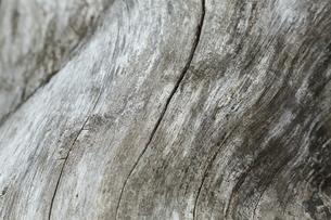 古い木材の写真素材 [FYI00210163]