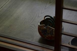 カトリセンコウの写真素材 [FYI00210402]