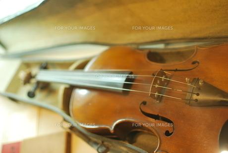 バイオリンの写真素材 [FYI00210421]