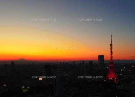 TOKYO TOWER〜夕暮れ〜の写真素材 [FYI00210441]