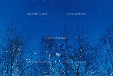 雪と青空の写真素材 [FYI00210463]