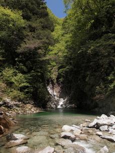 山梨・尾白川渓谷の滝の写真素材 [FYI00210512]