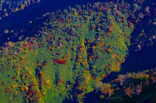 紅葉の苗場山の山肌の写真素材 [FYI00210536]