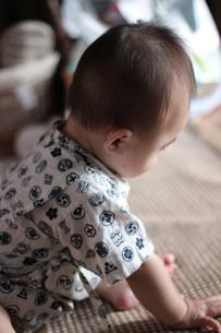 赤ちゃんの後姿の写真素材 [FYI00210544]