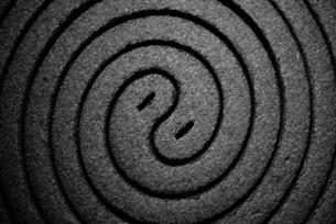 蚊取り線香の接写の写真素材 [FYI00210567]