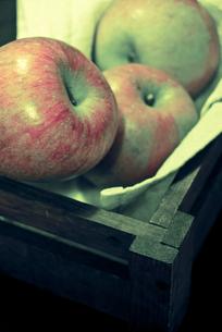 木箱に入ったリンゴの写真素材 [FYI00210601]