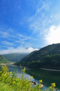 四万十川の写真素材 [FYI00210639]