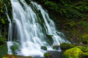 元滝伏流水の写真素材 [FYI00210675]