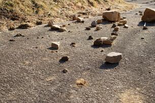 落石の写真素材 [FYI00211565]