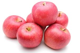 りんごの写真素材 [FYI00211675]
