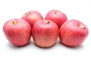 りんごの写真素材 [FYI00211688]