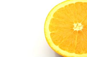 オレンジの写真素材 [FYI00211754]