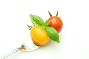 トマトの写真素材 [FYI00212032]