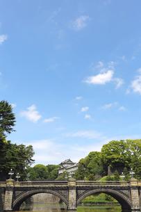 皇居の写真素材 [FYI00212367]