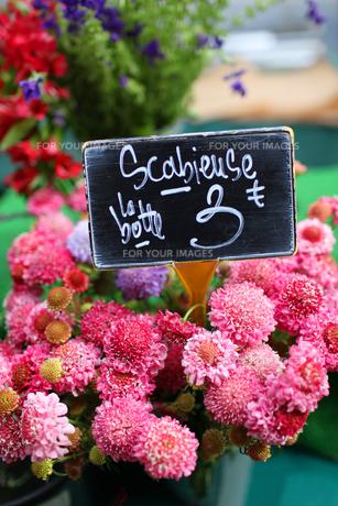 パリ、マルシェのお花屋さんの写真素材 [FYI00212476]