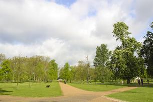 ロンドン ハイドパークの素材 [FYI00212482]