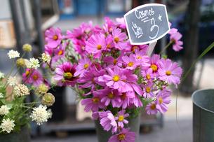 パリ、マルシェのお花屋さんの写真素材 [FYI00212590]