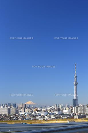 富士山と東京スカイツリーを同時に望む。(快晴の澄み切った青空の首都東京イメージ)の写真素材 [FYI00212673]