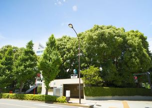 永田町駅の写真素材 [FYI00212676]