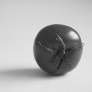 tomato(B&W)の写真素材 [FYI00212889]