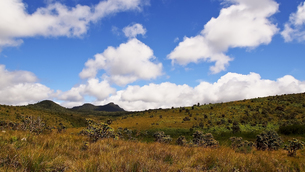 Horton Plains National Parkの写真素材 [FYI00212965]