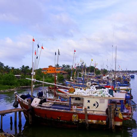 ニゴンボ港の写真素材 [FYI00213044]