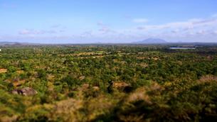 シーギリヤロックの頂上からの眺めの写真素材 [FYI00213085]