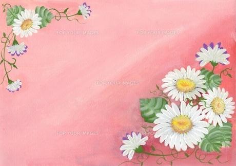 花祭り♪の写真素材 [FYI00213239]
