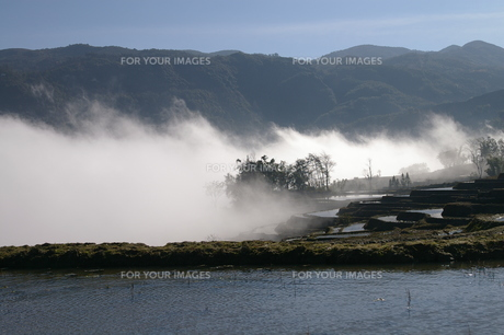 雲と棚田の写真素材 [FYI00213249]