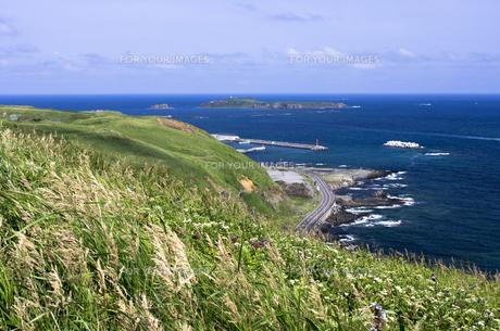 北海道礼文島 江戸屋山道より海岸線の道とトド島を望むの写真素材 [FYI00213307]
