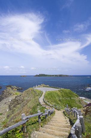 北海道礼文島 スコトン岬展望台への道のりからトド島を望むの写真素材 [FYI00213308]