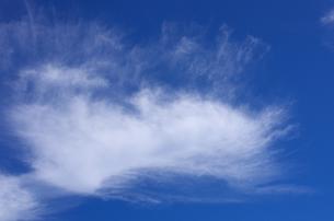 北海道礼文島 礼文岳登山コースから見えた雲  の写真素材 [FYI00213312]