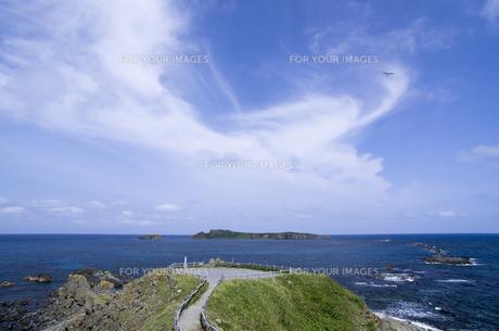 北海道礼文島 スコトン岬展望台よりトド島を望むの写真素材 [FYI00213322]