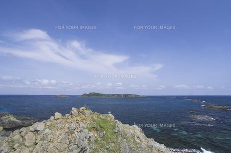 北海道礼文島 スコトン岬と2羽のウミネコとトド島 海の右側には岩礁が並ぶの写真素材 [FYI00213327]